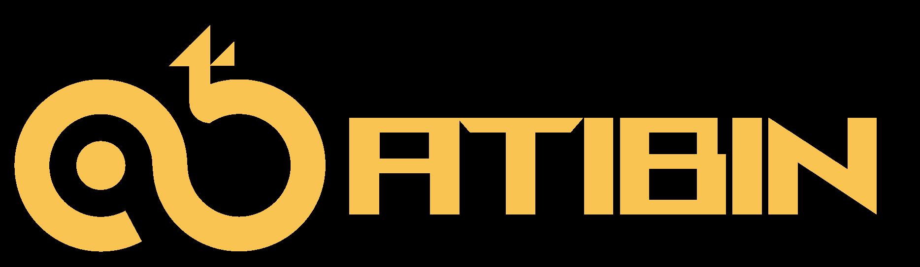 Ati Bin